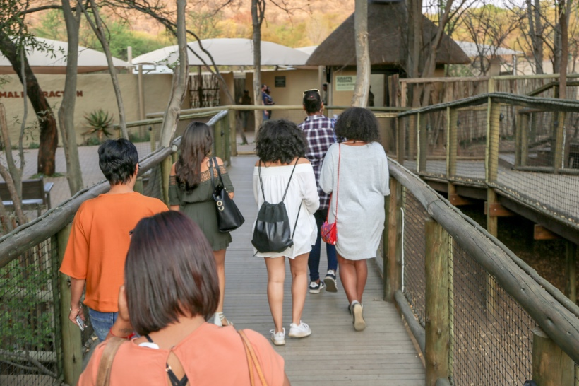 MK_Tours&Travel_LionPark-207